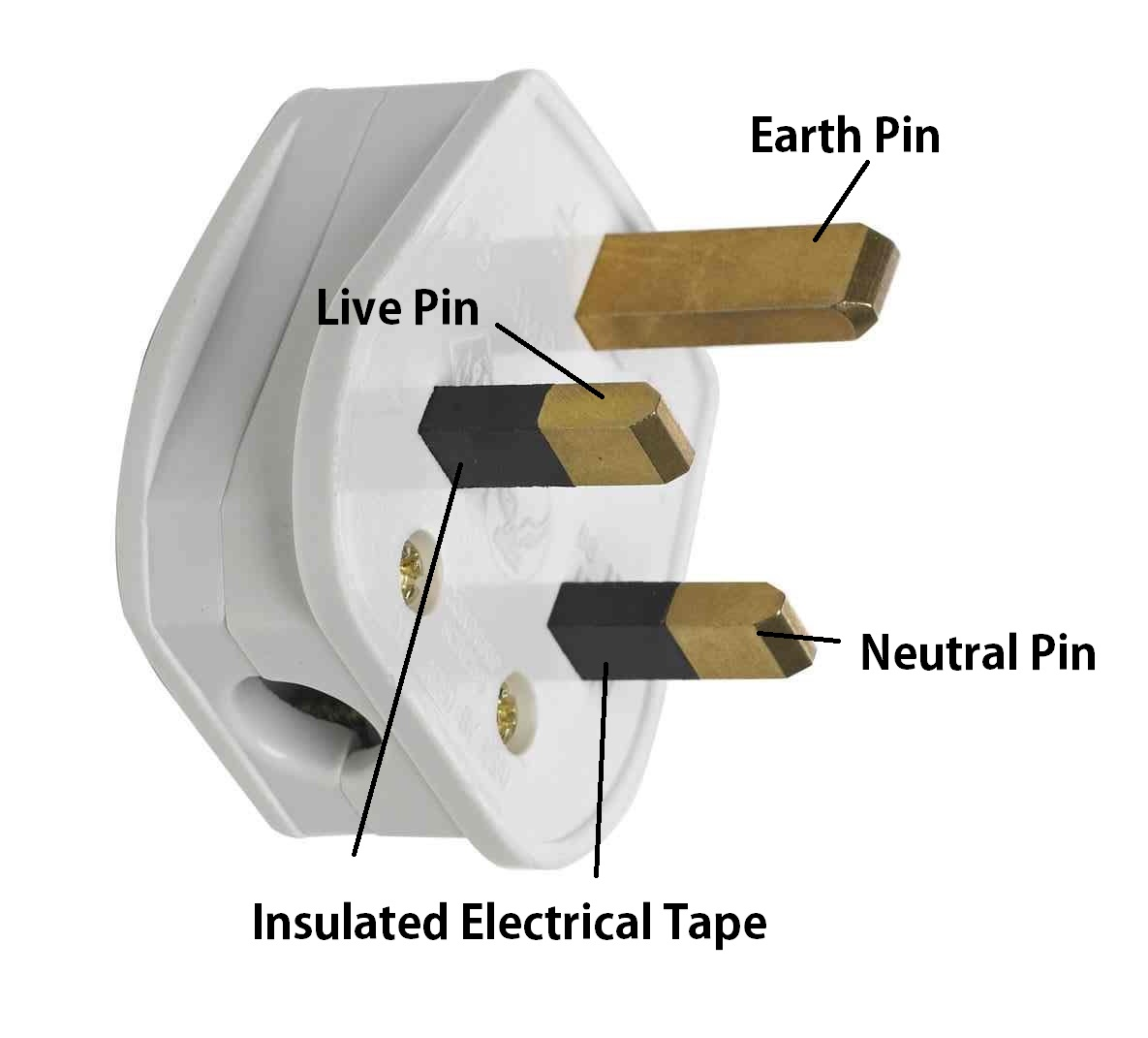 plug annotated